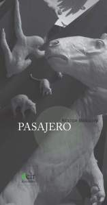 Pasajero Nestor Mendoza (1)